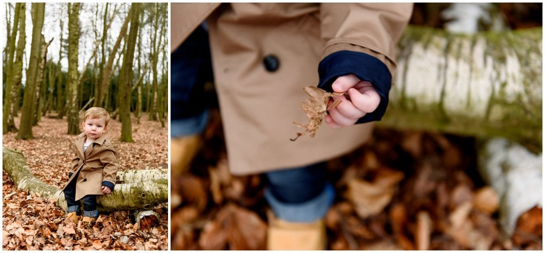 Pre-wedding engagement shoot in Sutton Park by Lisa Carpenter Photography, West Midlands based wedding and family photographer, Sutton Coldfield