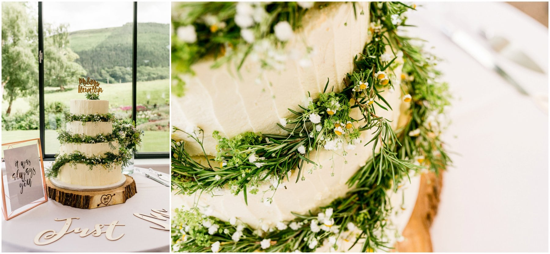 Ffion and Hefin's beautiful, elegant summer wedding at Ten Dwr Hall in Llangollen, Wales with wild flowers and sage colours by West Midlands and Wales Wedding photographer Lisa Carpenter Photography, specialising in cool, contemporary wedding photos. Wedding cake with green foliage and flowers.