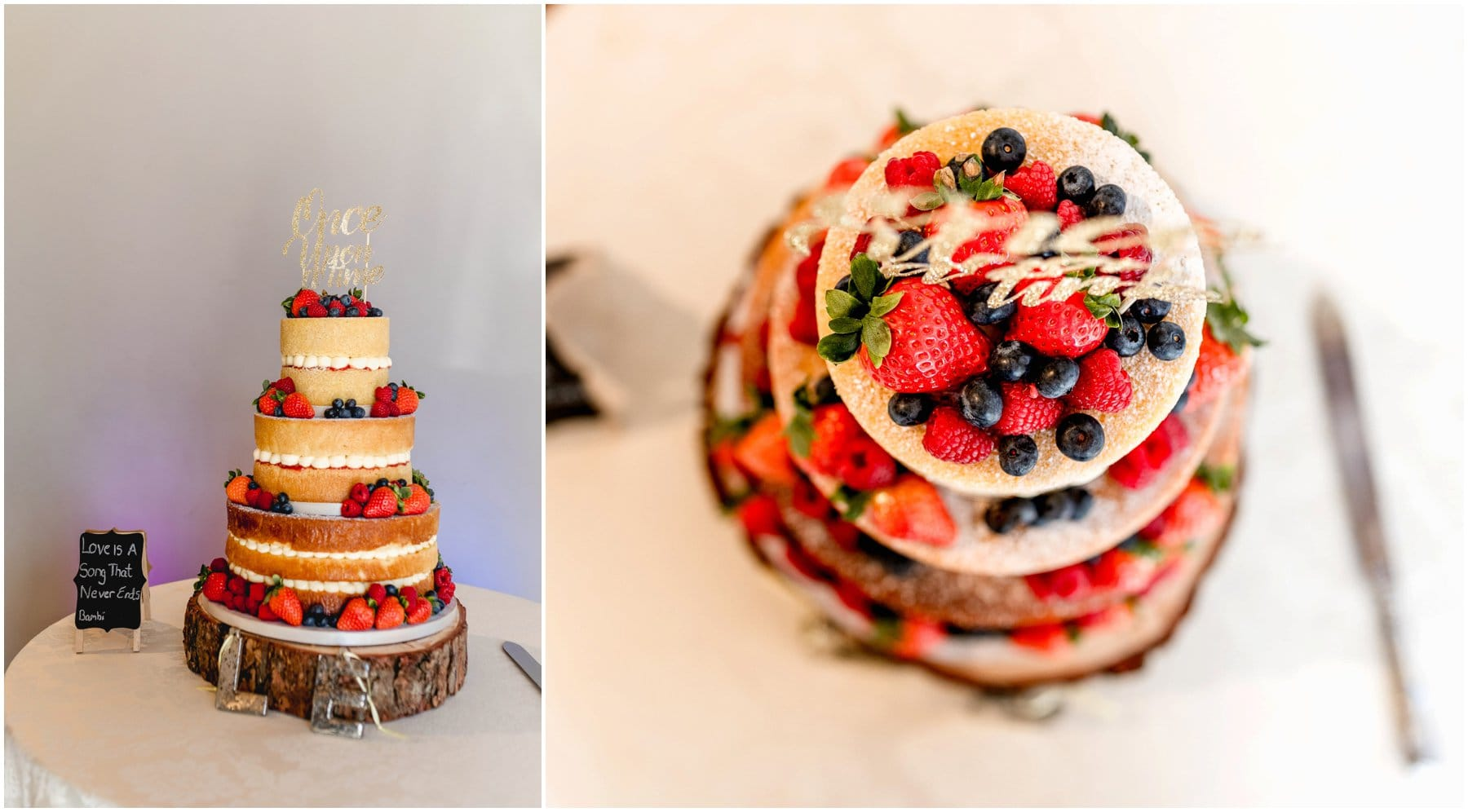 Naked wedding cake with summer fruits for a winter Disney themed wedding